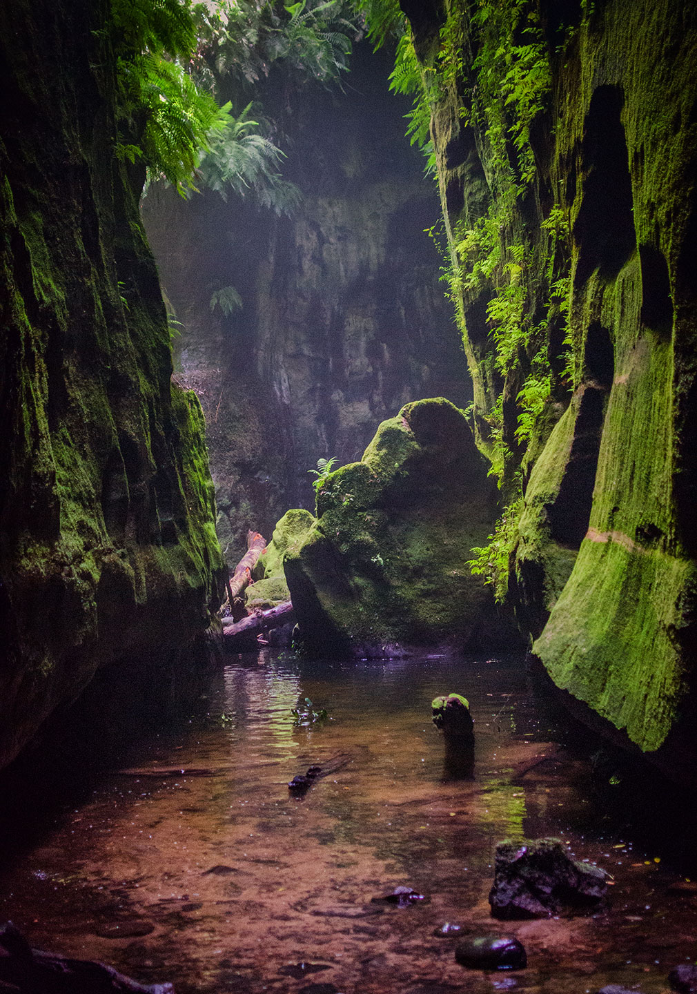 claustral-canyon-2013-07